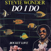 steviewonder-do-i-do