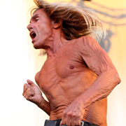 Iggy Pop - Lust for life 03