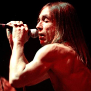 Iggy Pop - Lust for life 04